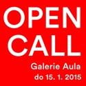 Open call pro Galerii Aula