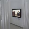 Komentovaná prohlídka výstavy Insomnie