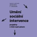 Michal Koleček - Umění sociální intervence