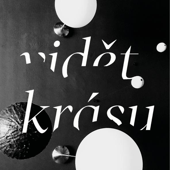 Petr Kamenický / Vidět krásu